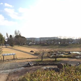 合志市の方の散歩名所「妙泉寺公園」